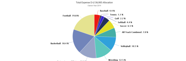 01-Clarion 2019 Expense by Sport